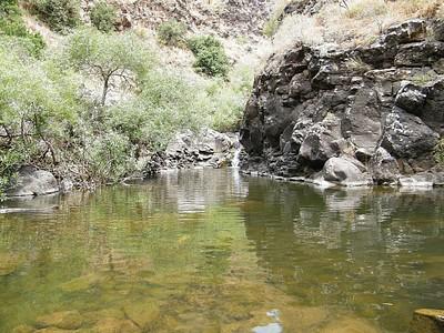 אחת הבריכות בתוך הנחל
