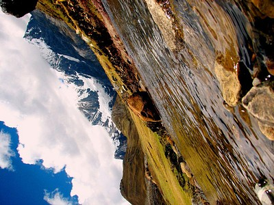 הנחל הרדוד עם ההרים