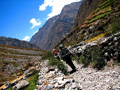גדרות אבנים בדרך אל הכפר