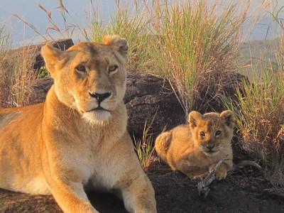 האמא והבן הקטן - בן חודש