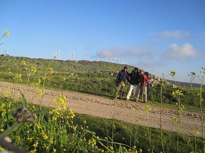 תחילת הר 'בני רסן' (ההר עם השבשבות)
