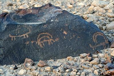 ציורי סלע - יעלים