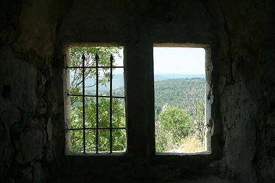 בקבר השייח מעל המעיין