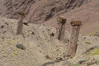 סלעים דמויי פטרייה