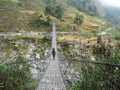 הטרק עובר באין-ספור גשרים תלויים לאורך המסלול