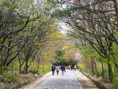 בדרך אל Seokguram grotto
