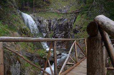 גשרי העץ המלווים את הדרך