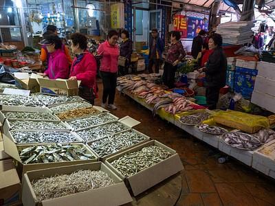 שוק הדגים ב-Tongyeong. נשאר בכלל משהו בים?