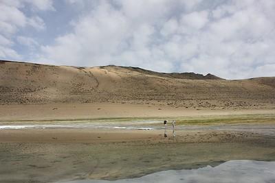 אגם טסו-קאר