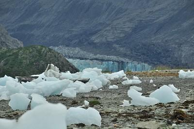 גן הקרח וקרחון Mcbride