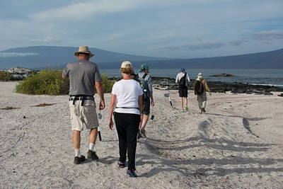 הליכה על אחד החופים באיזבלה