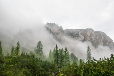 הערפל מתפוגג בבקר
