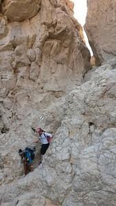 מדגרות הסלע