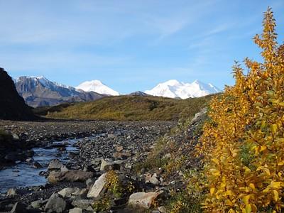 Glacier Creek & Mt. Mckinley