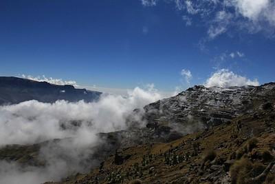 הנוף מבוואיט