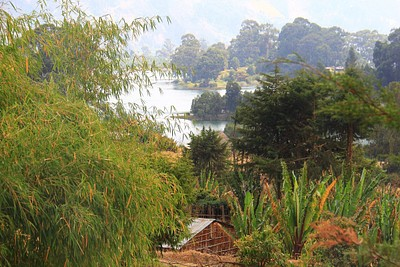 הכפר על שפת האגם ומאחורה תן לראות את האי ועליו הכנסייה