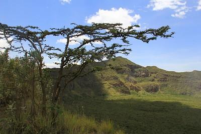 הר לונגונוט