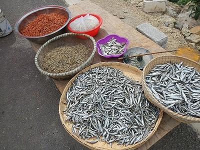 ייבוש דגים סביב ארחאי חו
