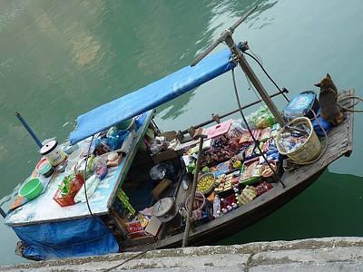 סירת השקם האלונג ביי