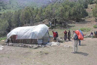 רועי צאן בדרך