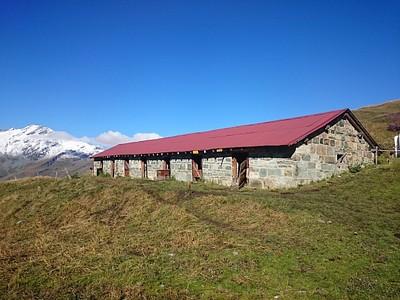 בית של פרות ב-2200 מטר גובה.