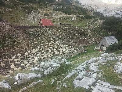 בקתות עמק לוקביץ - בקתת הרועים, מכלאת הכבשים ובקתת שינה