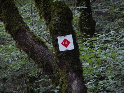 הסימון לאורך המסלול. יש גם סימונים אדומים על הסלעים