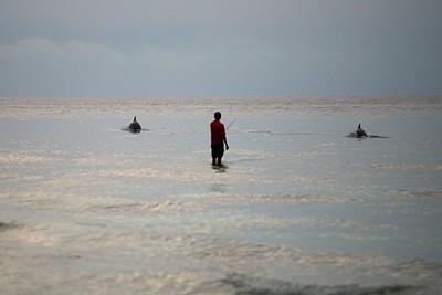 דולפינים ודייג בחוף הצפוני של האי