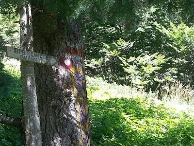 סימון שבילים - Rocky Trail (ותאכלס ברוב השבילים המסומנים ברחבי מקדוניה)