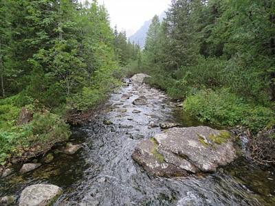 הנחל שמתחת לאתר ההנצחה