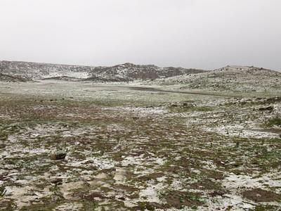 הברד שכיסה את הנוף של מרכז החקר לזאבים