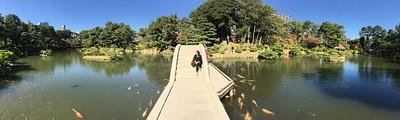 גן zen בעיר הירושימה
