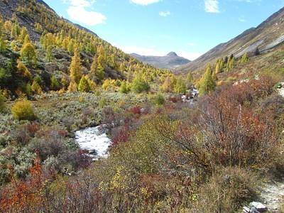 העמק המדהים בעלייה לכיוון הפאס