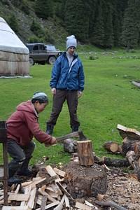 חוטבים עצים