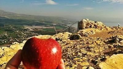 שרה וישראל ציידו אותי בפירות טריים שהיה מעולה לאכול בהפסקת בוקר על פסגת הר ארבל.