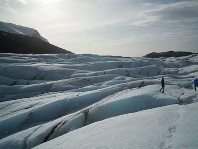 קרחון Svínafellsjökull