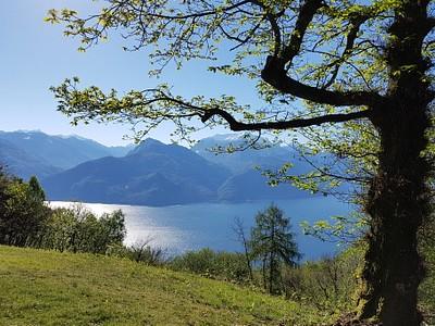אגם קומו