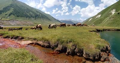 עמק המינרלים - טרוסו.