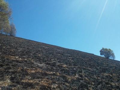 החלק האחרון של העליה בסימון שבילים שחור. האדמה השחורה מאש הוסיפה לתחושת החום והקושי.