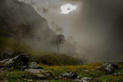יום גשום וערפילי שיצר רגעים קסומים