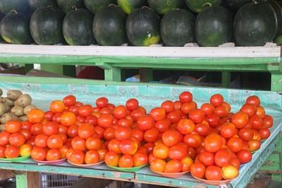 שוק פירות וירקות בדילי