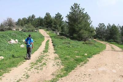 פיצול הדרכים בסמוך לחורבת עקב (מומלץ לבחור במסלול השמאלי)