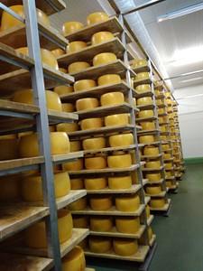 """מפעל גבינות """"Finisterra"""""""