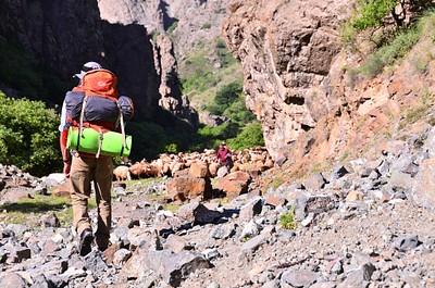 פוגשים רועים ארמניים בדרך