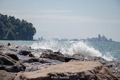 החוף של הגן הבוטני