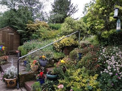 הגינה של פרנסיס ב-DRYMEN