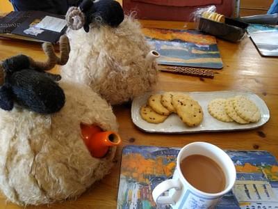 כן, כיסוי מצמר כבשים לקנקני התה!
