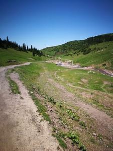 הכביש שמוביל לכפר