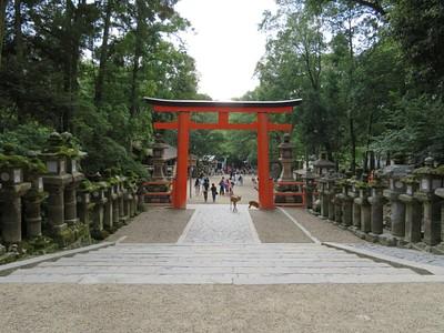 מקדש Kasuga Taisha