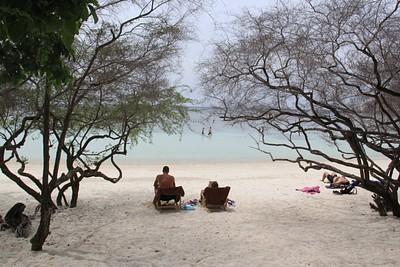 חוף הכרישים במלון Haadtien